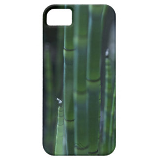Bamboo iPhone 5 Covers