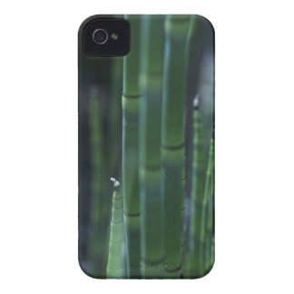 Bamboo iPhone 4 Case-Mate Cases