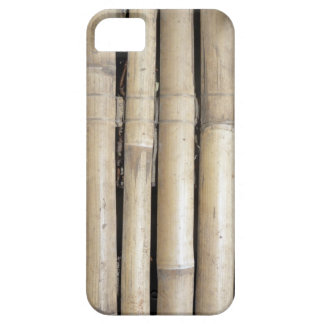 bamboo case for the iPhone 5