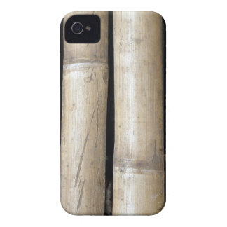 bamboo duo iPhone 4 Case-Mate case