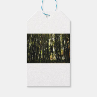 Bamboo Forest Gift Tags