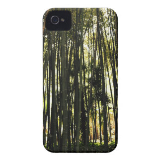 Bamboo Forest iPhone 4 Case-Mate Case
