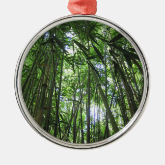 Bamboo Forest Maui Hawaii Tropical Jungle Trees Silver-Colored Round Ornament
