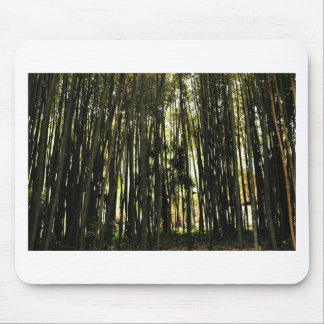 Bamboo Forest Mouse Pad