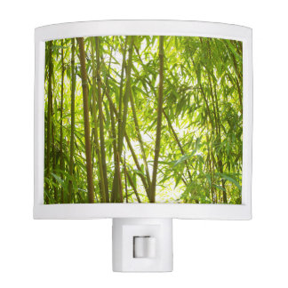 Bamboo Forest Night Light
