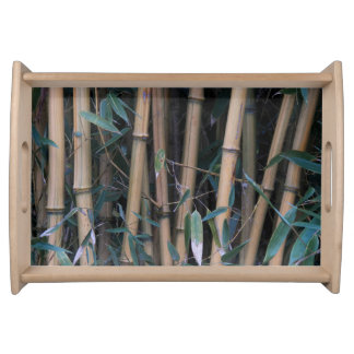 Bamboo Forest Photo Serving Tray