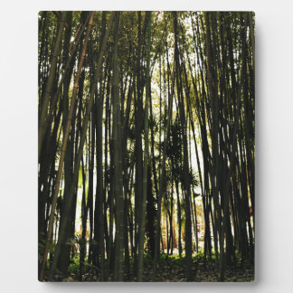 Bamboo Forest Plaque