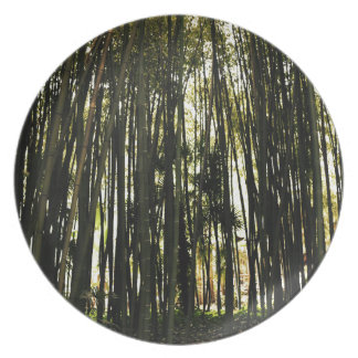 Bamboo Forest Plate