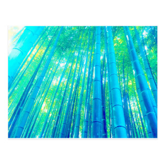 Bamboo Forest Series Postcard