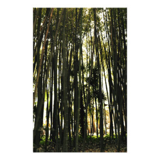 Bamboo Forest Stationery