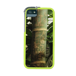 Bamboo Graffiti Case For iPhone 5