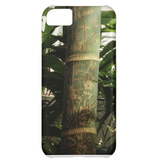 Bamboo Graffiti phone iPhone 5C Cases