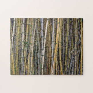 Bamboo in Hilo, Hawaii Jigsaw Puzzle