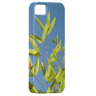 bamboo in the sky iPhone 5 case