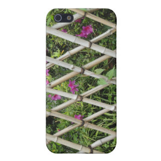 bamboo iPhone 5 cases