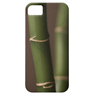 Bamboo iPhone 5 Cover