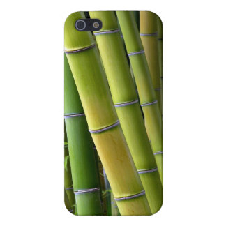 Bamboo iPhone 5/5S Cover