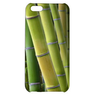 Bamboo iPhone 5C Cover
