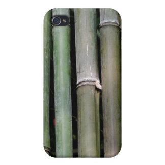 Bamboo iPhone 4 Cover
