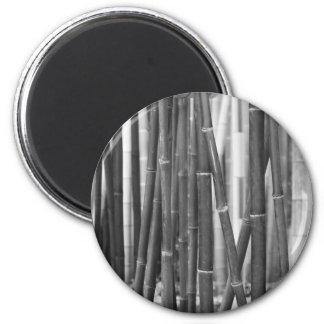Bamboo Magnet