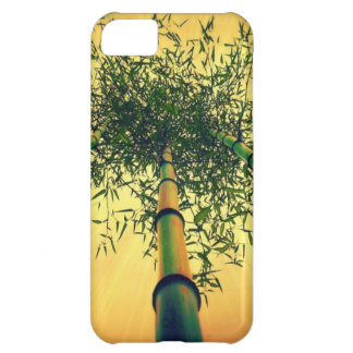 Bamboo Sky Cover For iPhone 5C