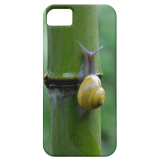 Bamboo snail Bamboo Slug macro iPhone 5 Case