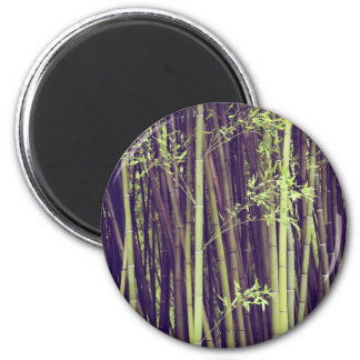 Bamboo trees magnet