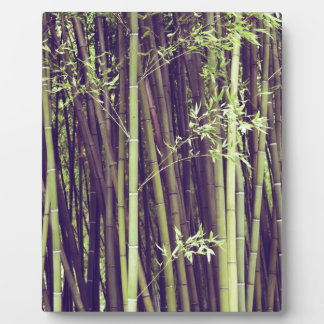 Bamboo trees plaque