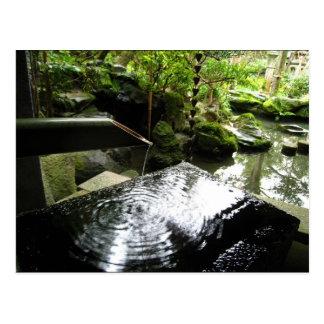 Bamboo Waterfall in Japan Postcard