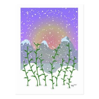 Bamboo Winter Postcard