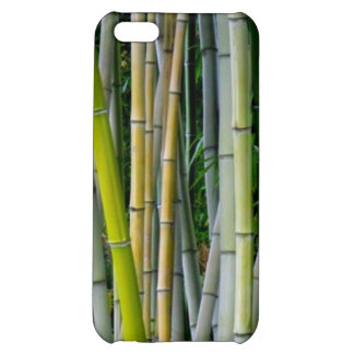 Bamboo Yellow Green Grey Case For iPhone 5C