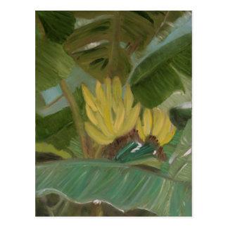 """""""Banana Grove"""" Postcard"""
