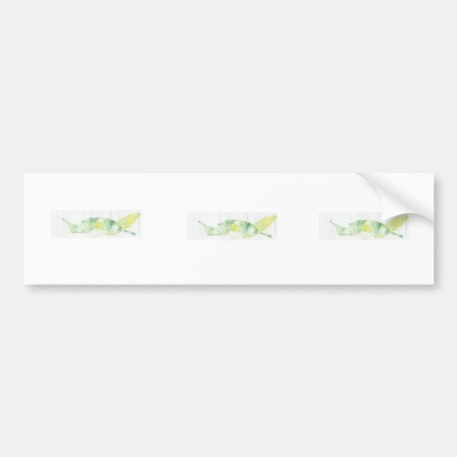 Banana Leaves Bumper Sticker