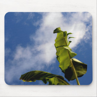 Banana Tree Leaves Mouse Pad