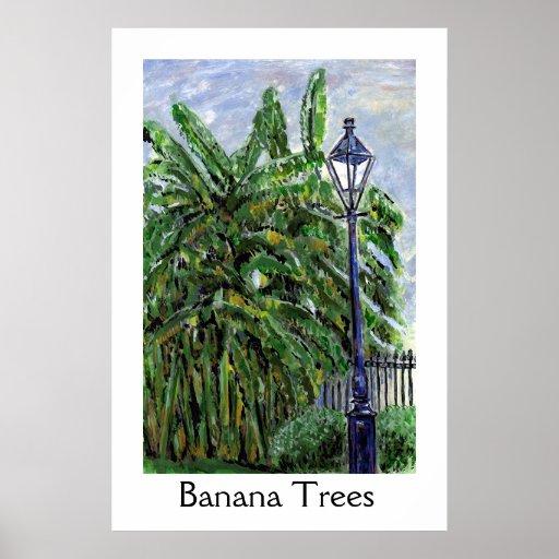 Banana Trees Posters