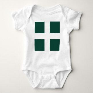 banat region flag baby bodysuit