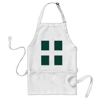banat region flag standard apron