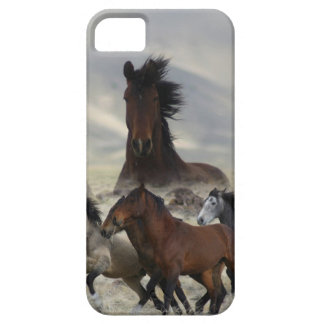 Band Of One iPhone 5 Case