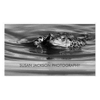 Bande transparente - carte de visite de photograph