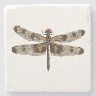 Banded Pennant Dragonfly Coaster