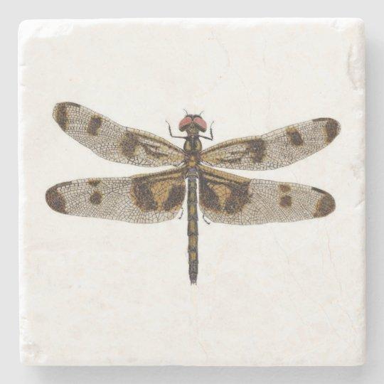 Banded Pennant Dragonfly Coaster Stone Beverage Coaster