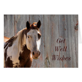 Bandit Get Well Card.. customize it yourself Card
