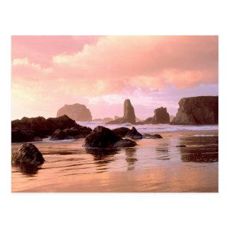Bandon Oregon Postcard