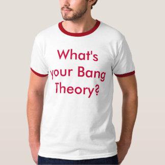 Bang theory t-shirt