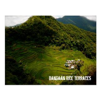 Bangaan Rice Terraces Postcard