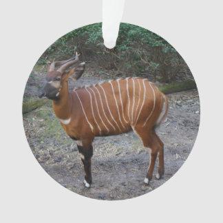 Bango (Antelope) Ornament