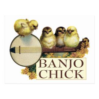 Banjo Chick Postcard