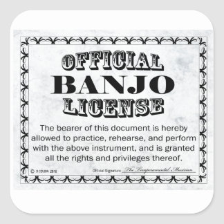 Banjo License Square Sticker