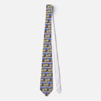 Banking and Finance Images Tie