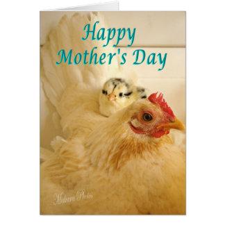 Banty hen & chick card